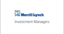 Merrill Lynch Investment